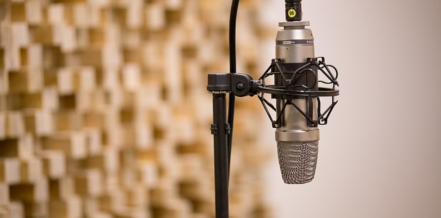 Microphone and music production.