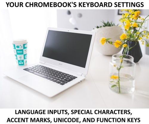 Use function keys, change language, use unicode, and type spcial characters and accent marks on Chromebook.