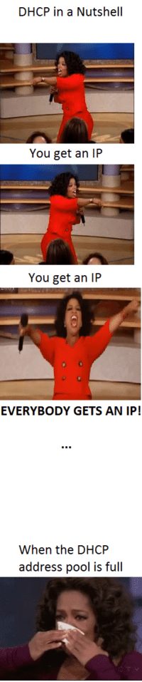 Oprah DNS problems on Chromebook meme.