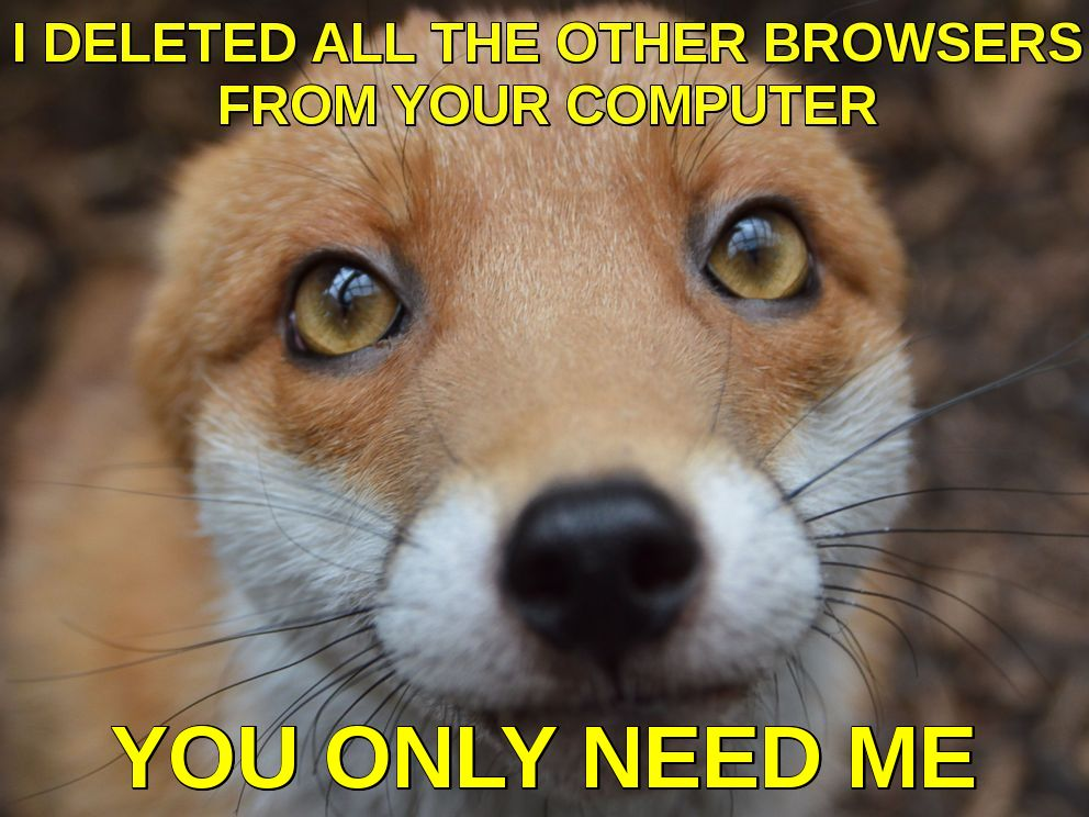 Firefox browser for Chrome OS.