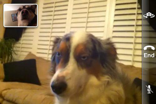 Install Skype on Chromebook.