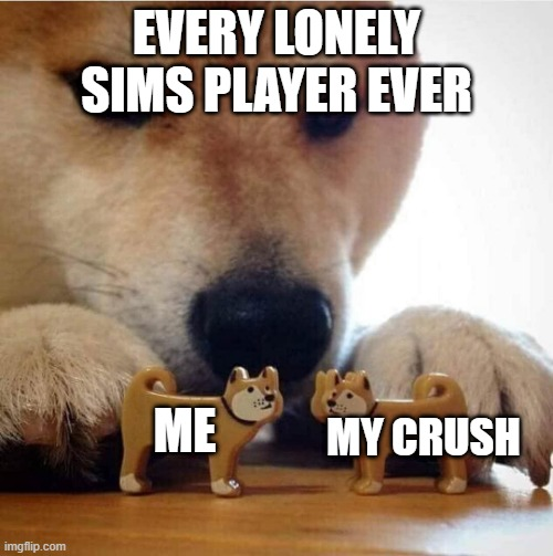 Sims 4 Chromebook meme.