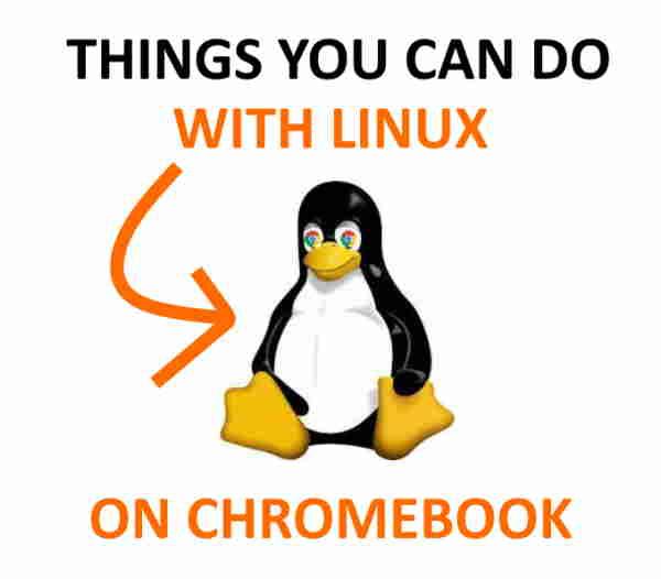 Linux on Chromebook.